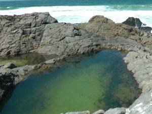 Tidle Pool